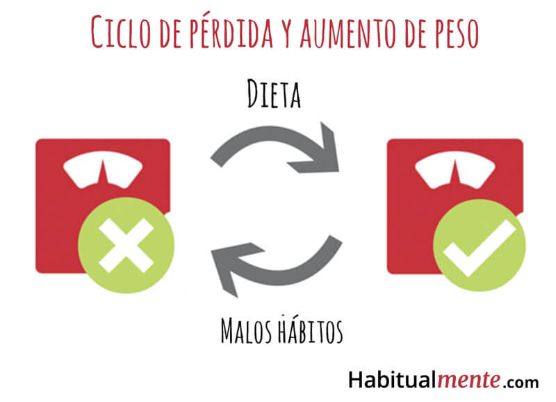 ciclo de perdida y aumento de peso