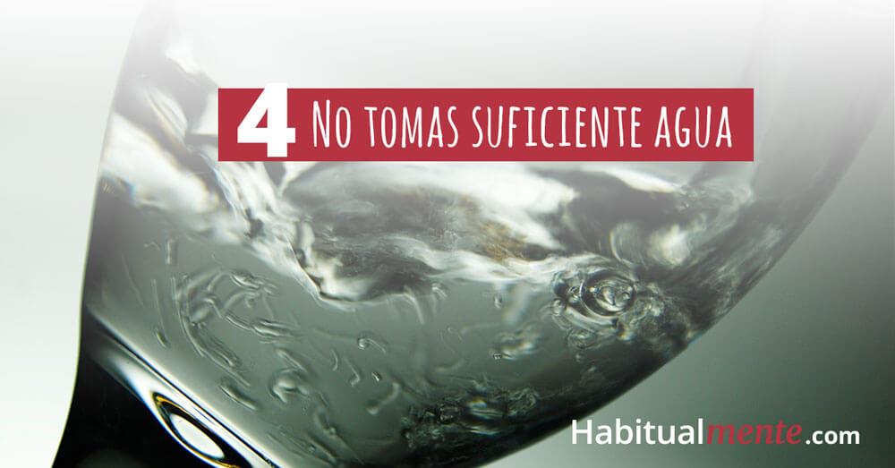 4 no tomas suficiente agua