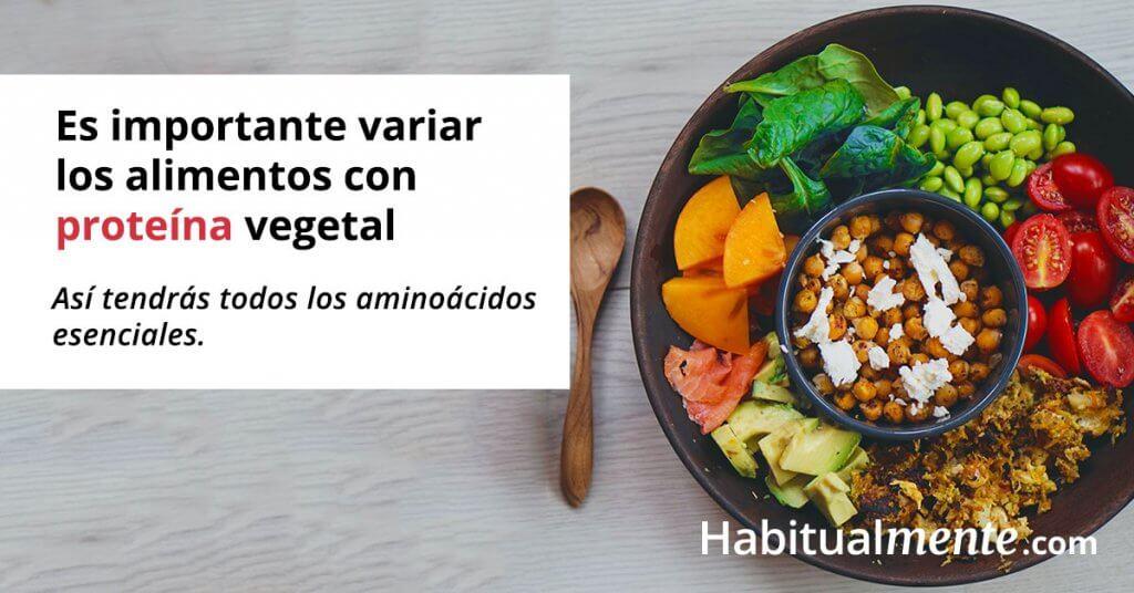 cuantos gramos de proteina hay que comer al dia